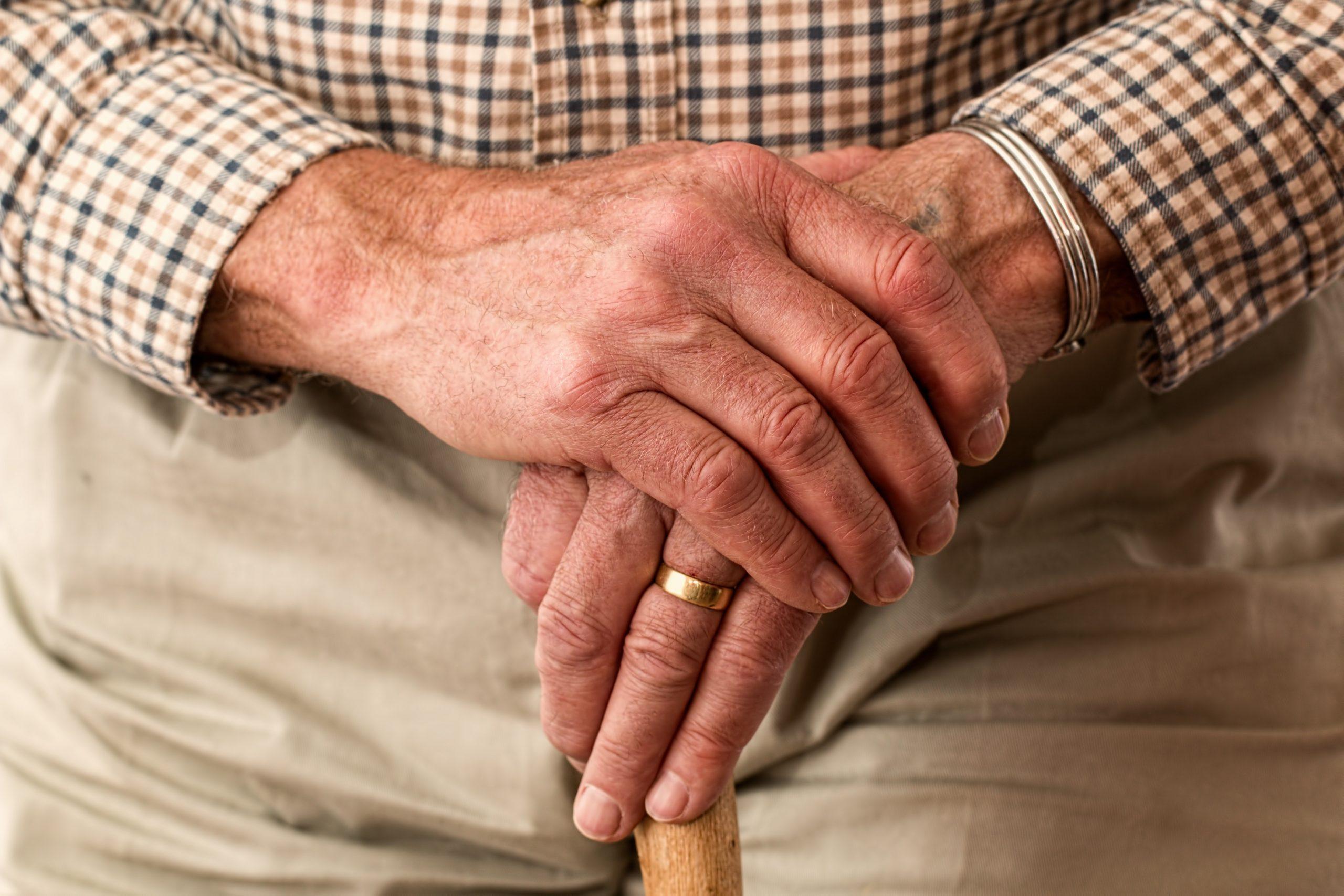 aged cane elder 33786 1 scaled