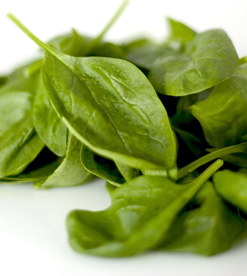 spinach 1322063 1